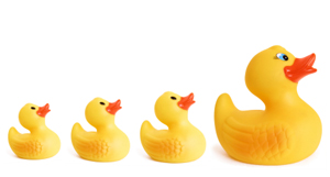 First Time Home Buyers Series - Get Your Ducks In A Row