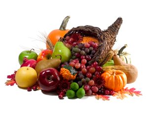 Happy Thanksgiving To You and Your Family!